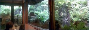 茶房から見える竜門の滝